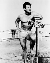 This is an image of 161967 Steve Reeves Photograph & Poster