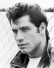 This is an image of Photograph & Poster of John Travolta 162343