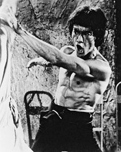 This is an image of 162463 Bruce Lee Photograph & Poster