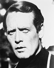 This is an image of 162858 Patrick McGoohan Photograph & Poster