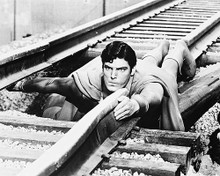 This is an image of 163052 Christopher Reeve Photograph & Poster