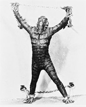 This is an image of 163527 The Creature from the Black Lagoon Photograph & Poster