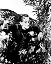 This is an image of 163535 Boris Karloff Photograph & Poster