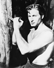 This is an image of 163757 Lex Barker Photograph & Poster