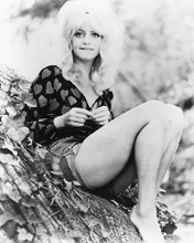 This is an image of 164249 Goldie Hawn Photograph & Poster