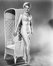 This is an image of 164406 Sheree North Photograph & Poster