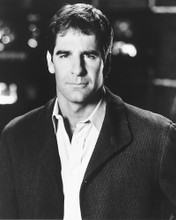 This is an image of 164711 Scott Bakula Photograph & Poster