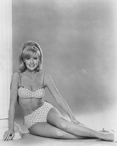 This is an image of 165203 Shelley Fabares Photograph & Poster
