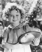 This is an image of 165363 Shirley Temple Photograph & Poster