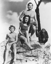 This is an image of 165665 Tarzan Photograph & Poster