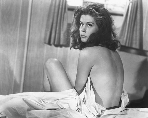 This is an image of 165950 Elizabeth Montgomery Photograph & Poster