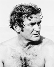 This is an image of 166964 Rod Taylor Photograph & Poster