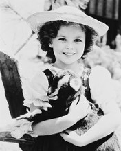 This is an image of 167161 Shirley Temple Photograph & Poster