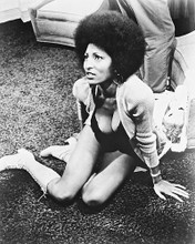 This is an image of 167208 Pam Grier Photograph & Poster