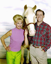 This is an image of 267456 Mr.Ed Photograph & Poster