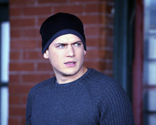 This is an image of 276312 Wentworth Miller Photograph & Poster