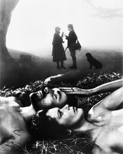 This is an image of 196502 Lady Chatterley's Lover (1981) Photograph & Poster