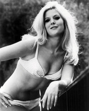 This is an image of 196758 Meredith Macrae Photograph & Poster