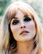 This is an image of 280788 Sharon Tate Photograph & Poster