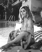 This is an image of 190207 Sharon Tate Photograph & Poster
