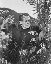 This is an image of 190518 Boris Karloff Photograph & Poster