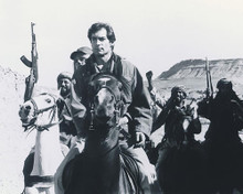 This is an image of 190628 Timothy Dalton Photograph & Poster