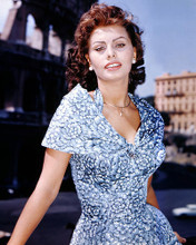 This is an image of 281014 Sophia Loren Photograph & Poster