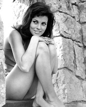 This is an image of 190702 Raquel Welch Photograph & Poster