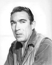 This is an image of 190729 Anthony Quinn Photograph & Poster