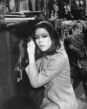 This is an image of 190758 Diana Rigg Photograph & Poster