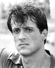 This is an image of 190994 Sylvester Stallone Photograph & Poster