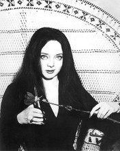 This is an image of 191204 Carolyn Jones Photograph & Poster
