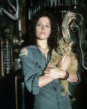 This is an image of 281385 Sigourney Weaver Photograph & Poster