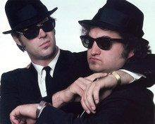 This is an image of 281379 The Blues Brothers Photograph & Poster