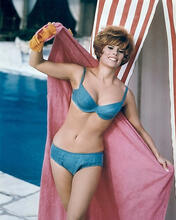 This is an image of 281561 Jill St. John Photograph & Poster