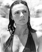 This is an image of 191399 Jacqueline Bisset Photograph & Poster