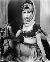 This is an image of 191445 Barbara Eden Photograph & Poster