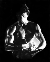 This is an image of 191533 Sylvester Stallone Photograph & Poster