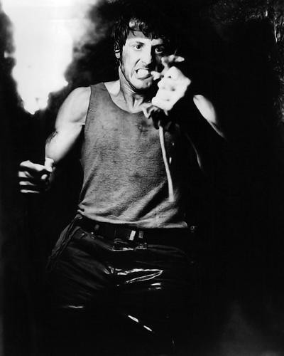 This is an image of 191566 Sylvester Stallone Photograph & Poster
