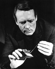 This is an image of 191596 Patrick McGoohan Photograph & Poster