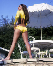 This is an image of 281885 Edy Williams Photograph & Poster