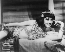 This is an image of 192205 Amanda Barrie Photograph & Poster