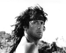 This is an image of 192372 Sylvester Stallone Photograph & Poster