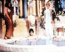 This is an image of 281972 Elizabeth Taylor Photograph & Poster