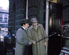 This is an image of 282074 The Private Life of Sherlock Holmes Photograph & Poster