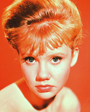 This is an image of 227481 Hayley Mills Photograph & Poster
