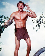 This is an image of 228654 Denny Miller Photograph & Poster