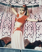 This is an image of 215574 Barbara Eden Photograph & Poster