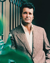 This is an image of 215590 James Garner Photograph & Poster