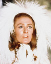 This is an image of 217701 Vanessa Redgrave Photograph & Poster